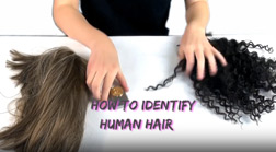 How to identify real human hair Product || Human Hair VS Synthetic Hair